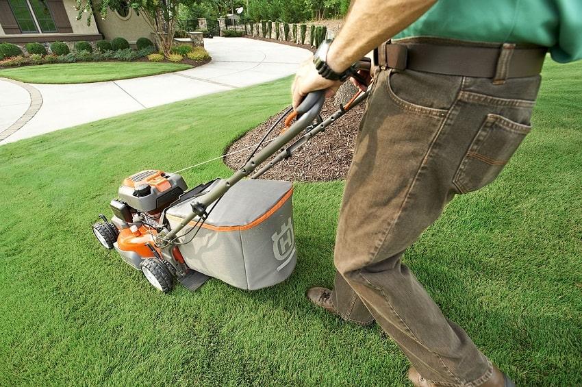 Come si semina il tappeto erboso 3 - Pierucci Agricoltura