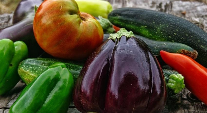 L'orto sinergico: cos'è e come funziona - Pierucci Agricoltura 1