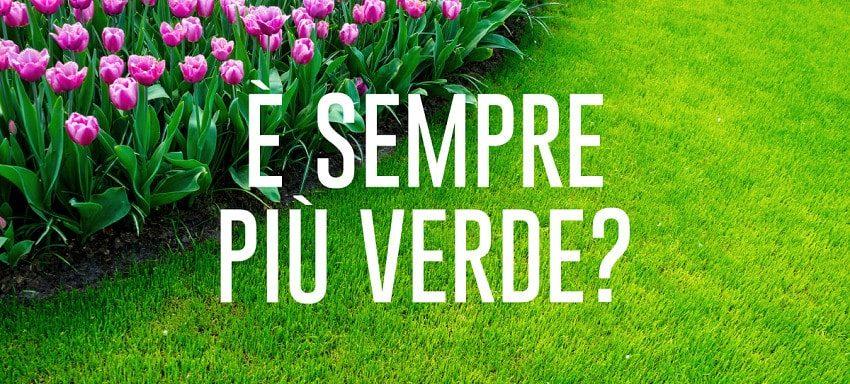 Come si semina il tappeto erboso (parte 2) - Pierucci Agricoltura