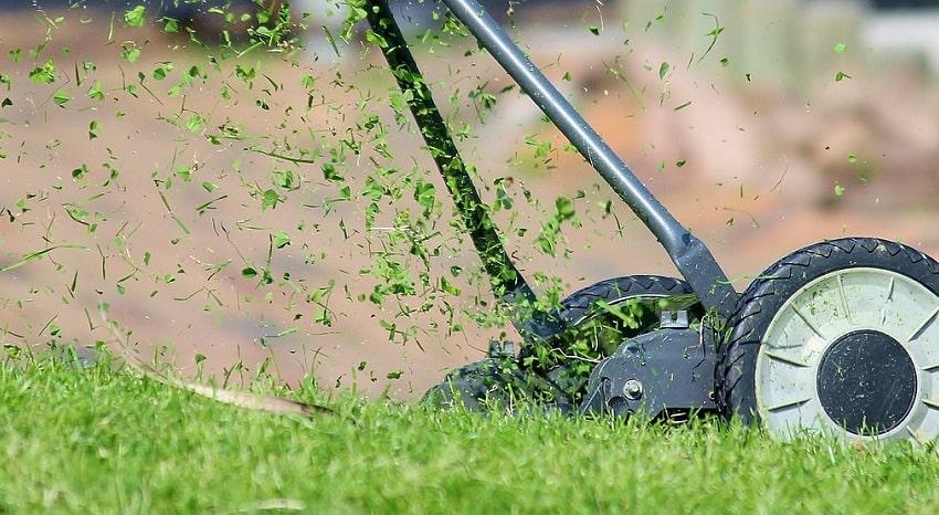 Come organizzare una perfetta grigliata in giardino - Pierucci Agricoltura