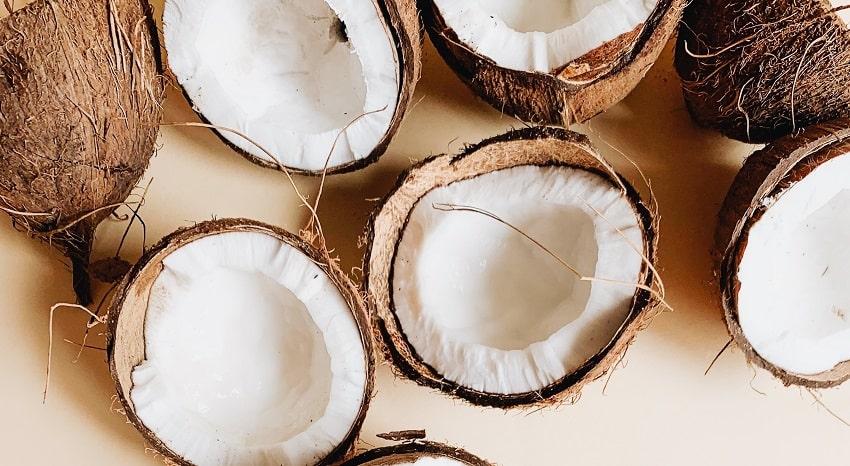 La fibra di cocco: cos'è e come si utilizza - Pierucci Agricoltura (3)