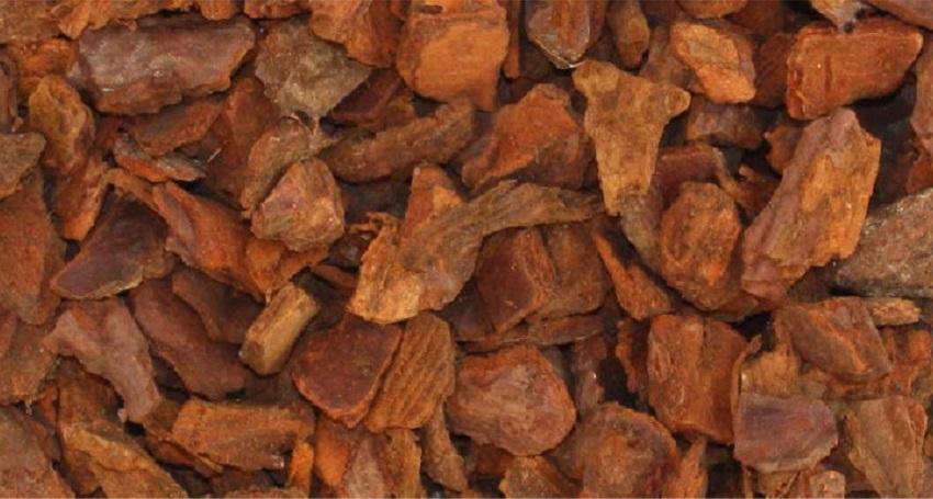 Corteccia - La pacciamatura con materiali naturali: quali sono i migliori? - Pierucci Agricoltura