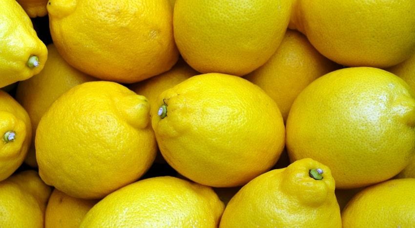 Limoni gialli - Come potare i limoni: trucchi e consigli